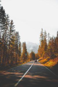 driver risk assessment autumn driving