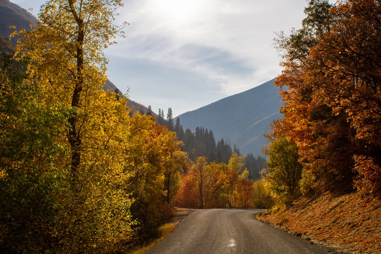 Preparing for Autumn Driving with a Driver Risk Assessment